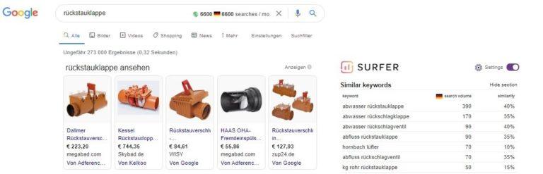 Keyword Analyse Rückstauklappe google serps