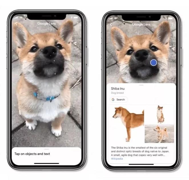 Google Lens Online Marketing Trends 2021